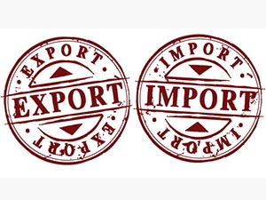 i298000431mport-export