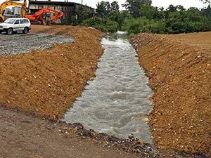 ქუთაისის ნაგავსაყრელზე კიპარისისა და ვერხვის ჯიშის 400 ძირი ხე დაირგო