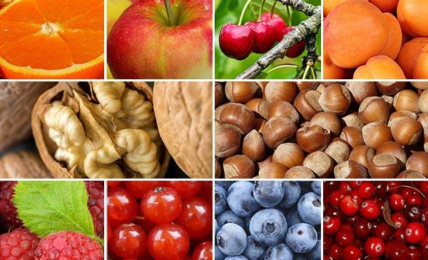 კაკალი, ხილი, კენკრა