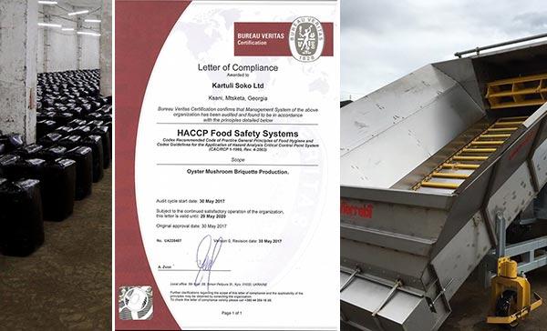 სოკო, HACCP
