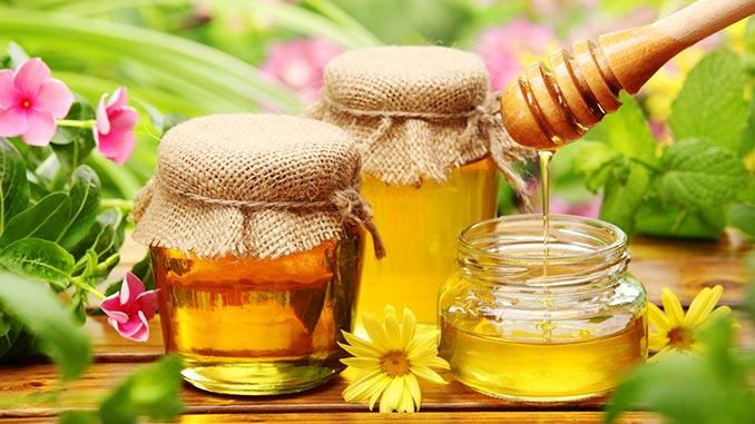 თაფლი, სასარგებლო, სამკურნალო