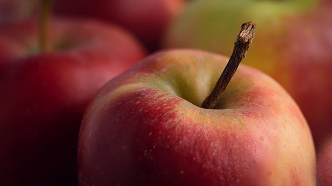 სიდრი, ვაშლის, ღვინო