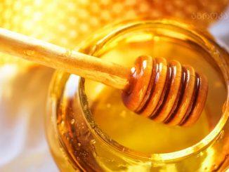 თაფლი, რეგლამენტი