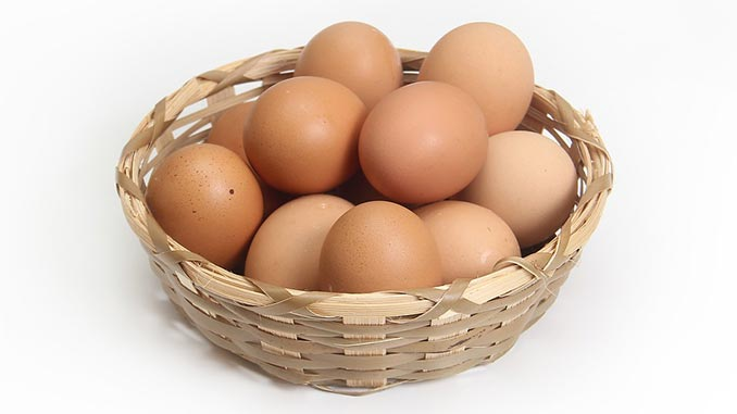 როგორ, შევინახოთ, კვერცხი