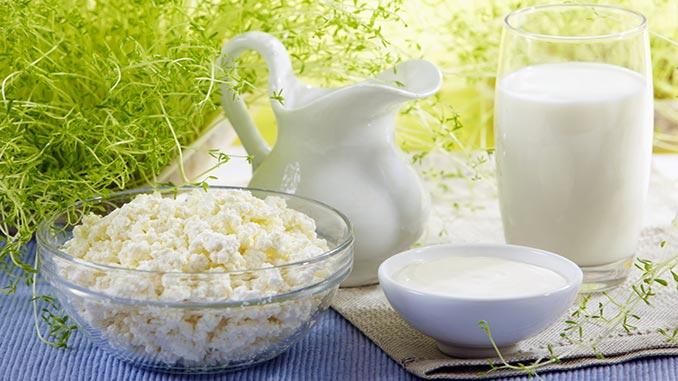 ხაჭო, არაჟანი, რძემჟავა, რძე