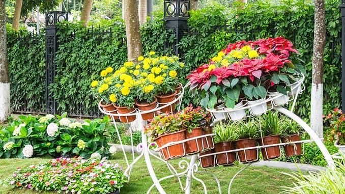 ლანდშტაფი, ბაღის, დიზაინი