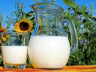 საღი, რძე