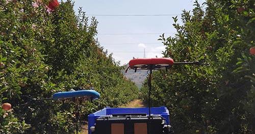 მფრინავი, რობოტი, მოსავალი, ხილი