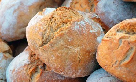 პურის ცოცხალი ხაშის (საფუარი) მომზადება